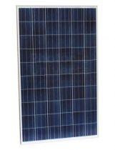 Ulica Solar UL-250P-60 - Solárny panel
